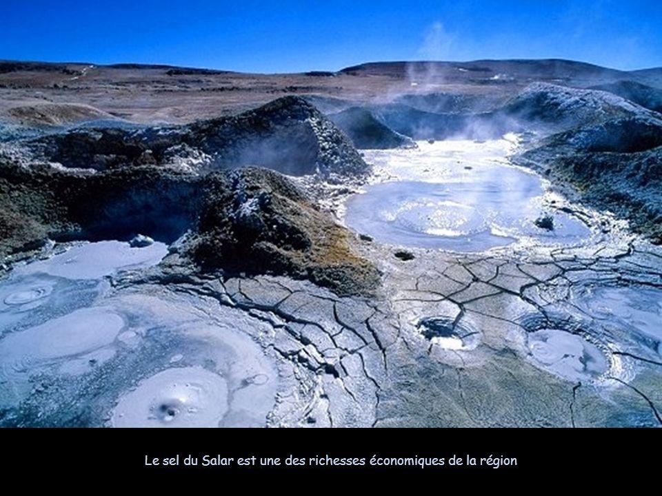 Le sel du Salar est une des richesses économiques de la région