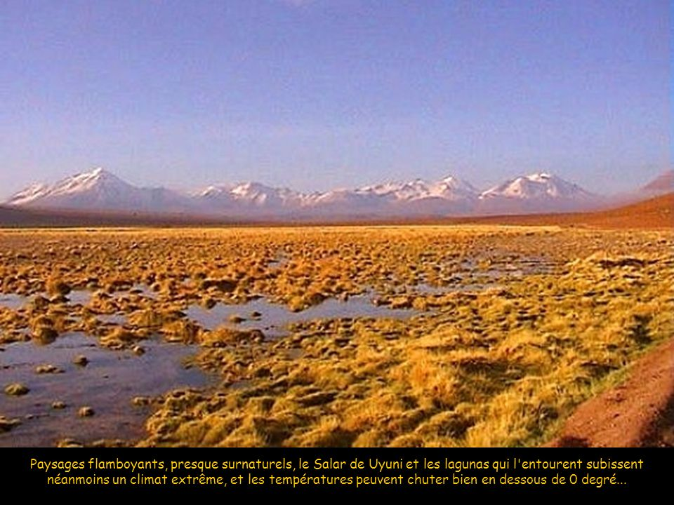 Paysages flamboyants, presque surnaturels, le Salar de Uyuni et les lagunas qui l entourent subissent néanmoins un climat extrême, et les températures peuvent chuter bien en dessous de 0 degré...