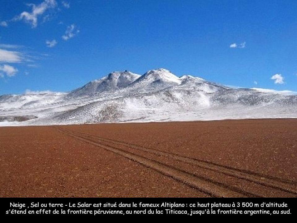 Neige , Sel ou terre - Le Salar est situé dans le fameux Altiplano : ce haut plateau à 3 500 m d altitude s étend en effet de la frontière péruvienne, au nord du lac Titicaca, jusqu à la frontière argentine, au sud.