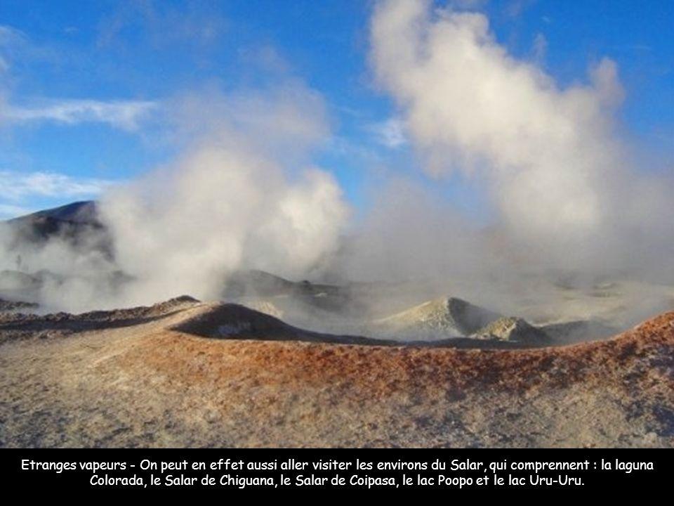 Etranges vapeurs - On peut en effet aussi aller visiter les environs du Salar, qui comprennent : la laguna Colorada, le Salar de Chiguana, le Salar de Coipasa, le lac Poopo et le lac Uru-Uru.
