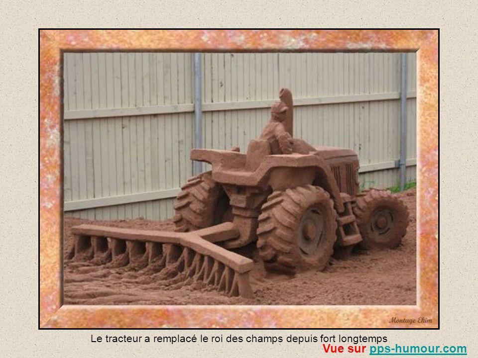 Le tracteur a remplacé le roi des champs depuis fort longtemps