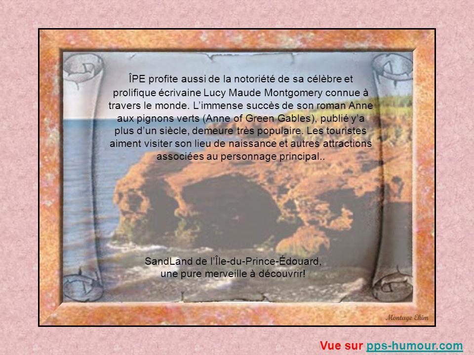 SandLand de l'Île-du-Prince-Édouard, une pure merveille à découvrir!