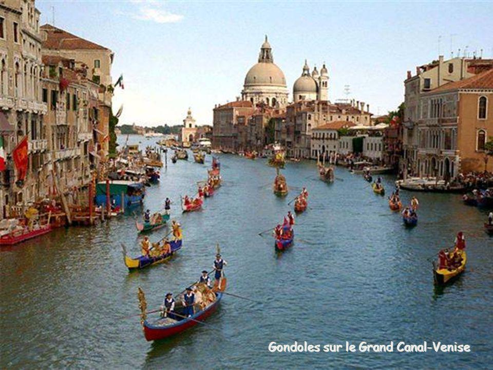 Gondoles sur le Grand Canal-Venise