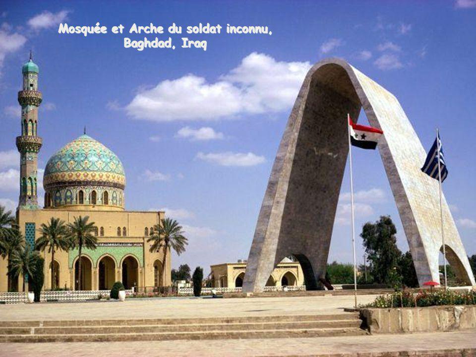 Mosquée et Arche du soldat inconnu,