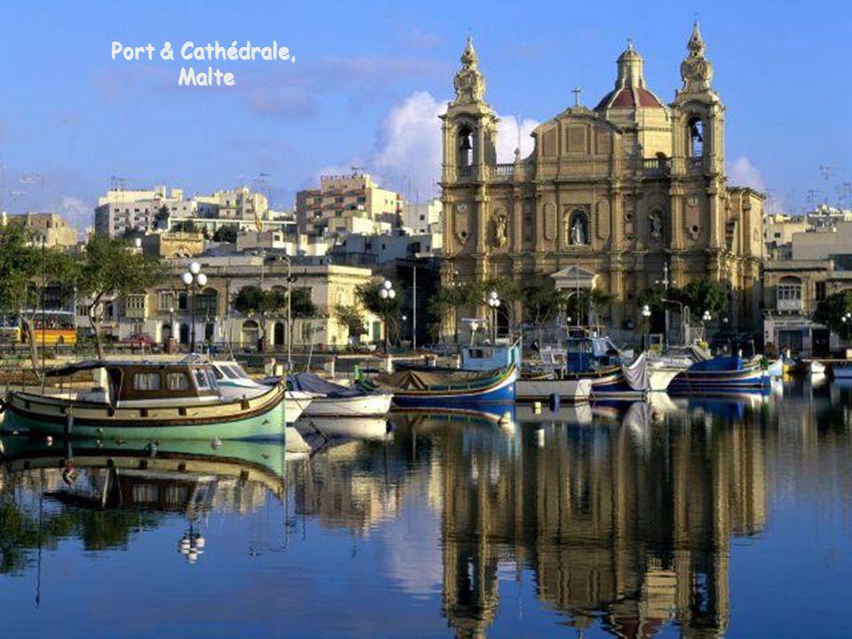 Port & Cathédrale, Malte