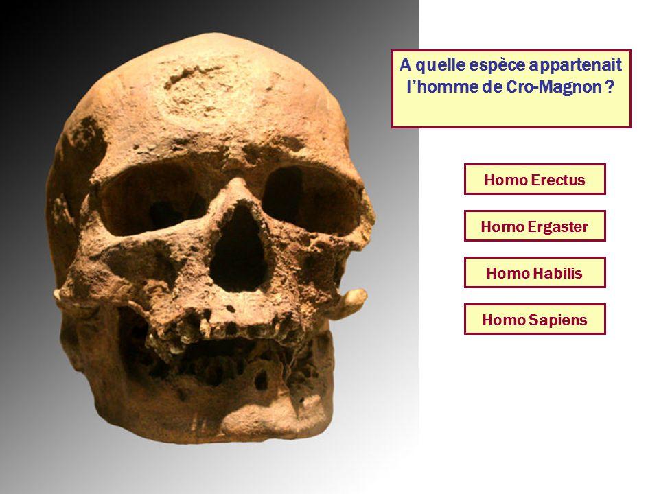 A quelle espèce appartenait l'homme de Cro-Magnon