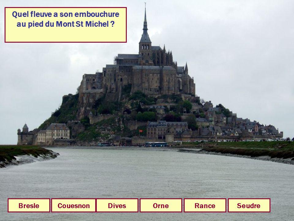 Quel fleuve a son embouchure au pied du Mont St Michel