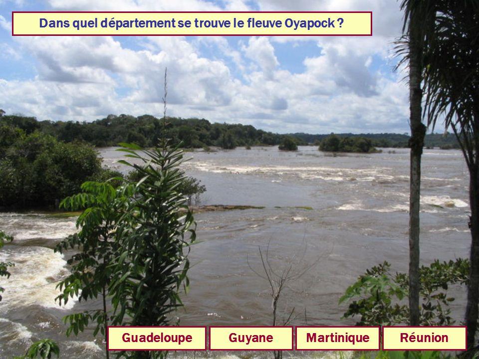 Dans quel département se trouve le fleuve Oyapock