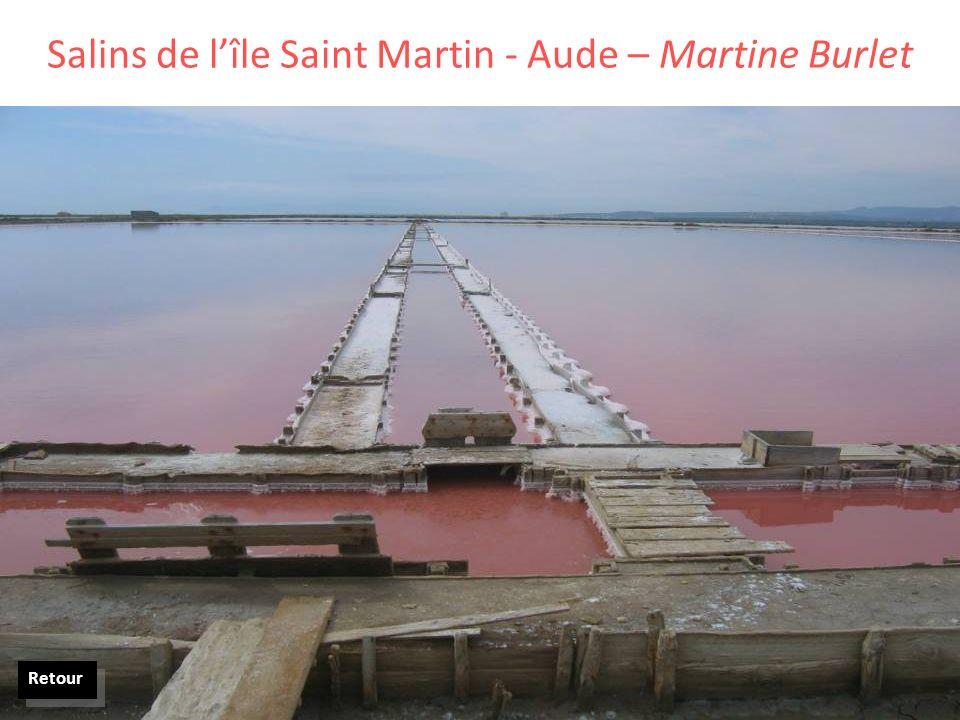 Salins de l'île Saint Martin - Aude – Martine Burlet