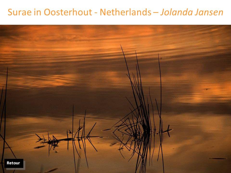 Surae in Oosterhout - Netherlands – Jolanda Jansen