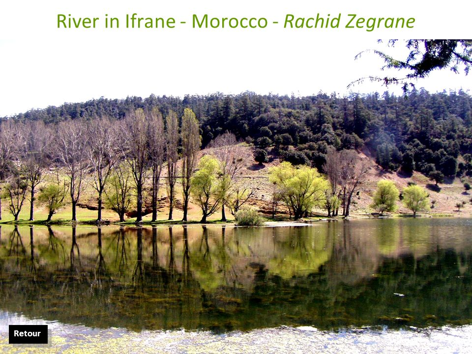 River in Ifrane - Morocco - Rachid Zegrane