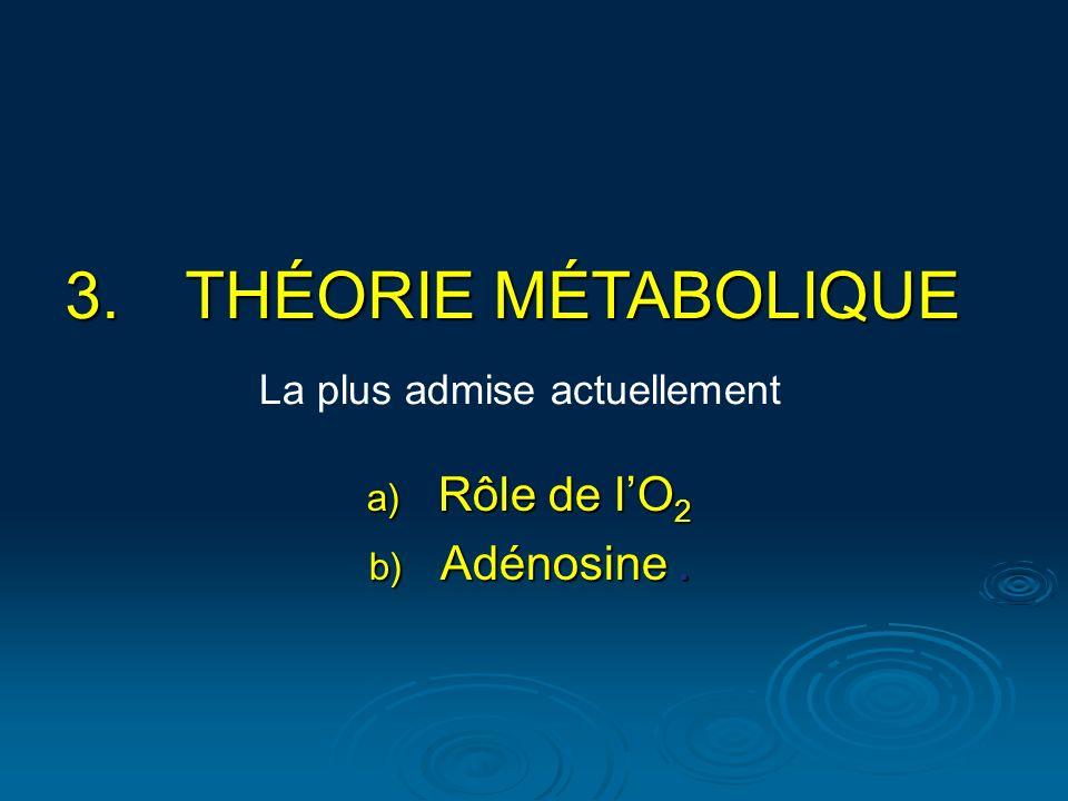 THÉORIE MÉTABOLIQUE Rôle de l'O2 Adénosine .