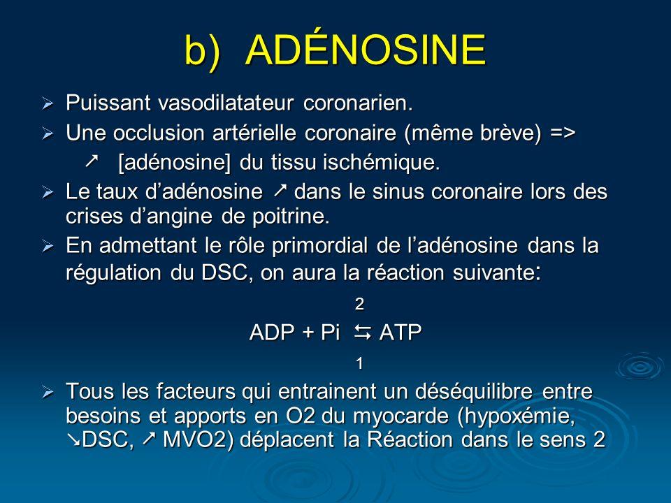 ADÉNOSINE Puissant vasodilatateur coronarien.