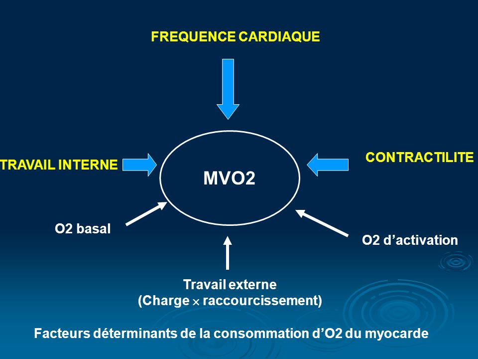 MVO2 FREQUENCE CARDIAQUE CONTRACTILITE TRAVAIL INTERNE O2 basal