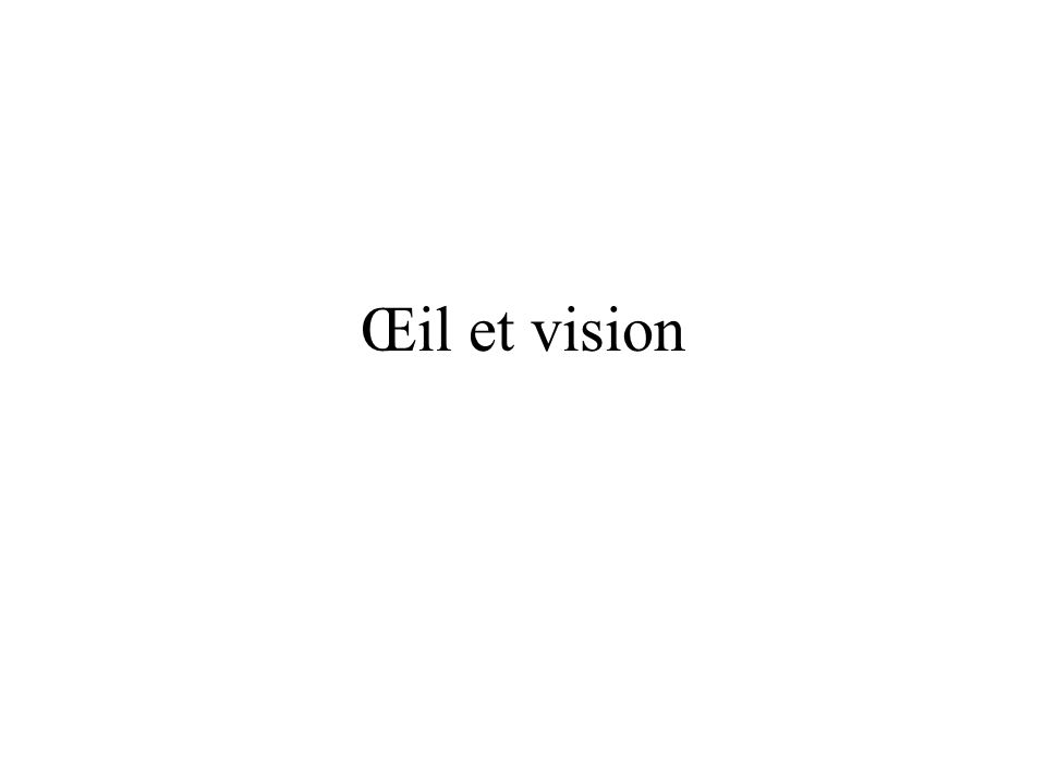 Œil et vision