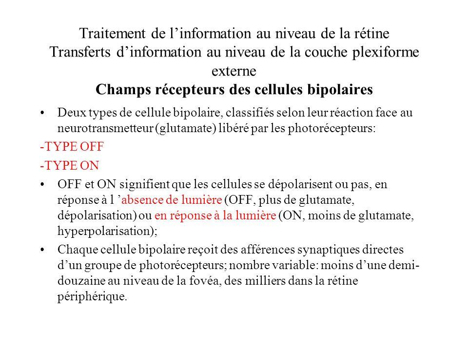 Traitement de l'information au niveau de la rétine Transferts d'information au niveau de la couche plexiforme externe Champs récepteurs des cellules bipolaires
