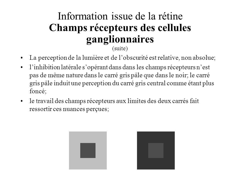 Information issue de la rétine Champs récepteurs des cellules ganglionnaires (suite)