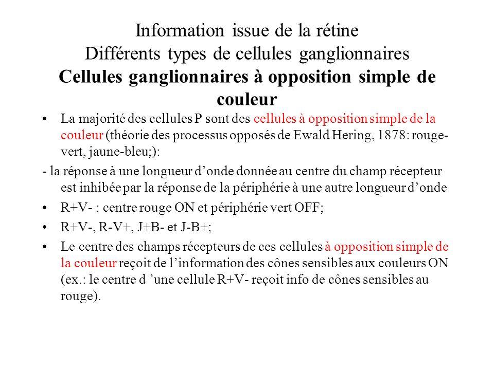 Information issue de la rétine Différents types de cellules ganglionnaires Cellules ganglionnaires à opposition simple de couleur