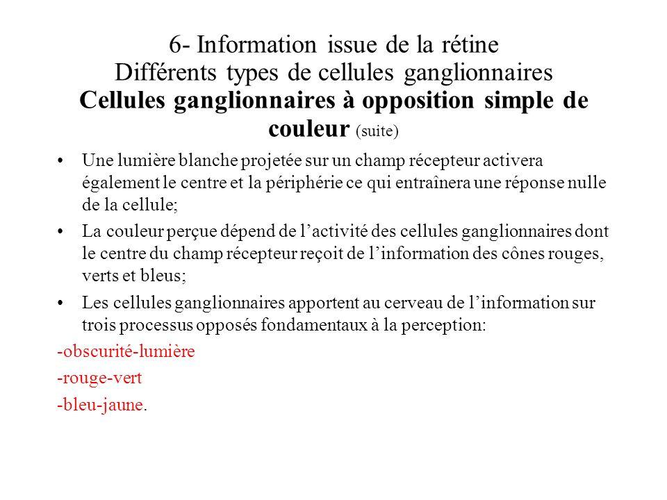 6- Information issue de la rétine Différents types de cellules ganglionnaires Cellules ganglionnaires à opposition simple de couleur (suite)