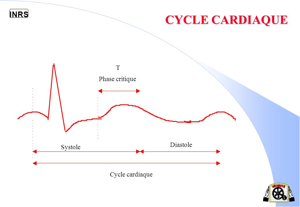 CYCLE CARDIAQUE T Phase critique Diastole Systole Cycle cardiaque