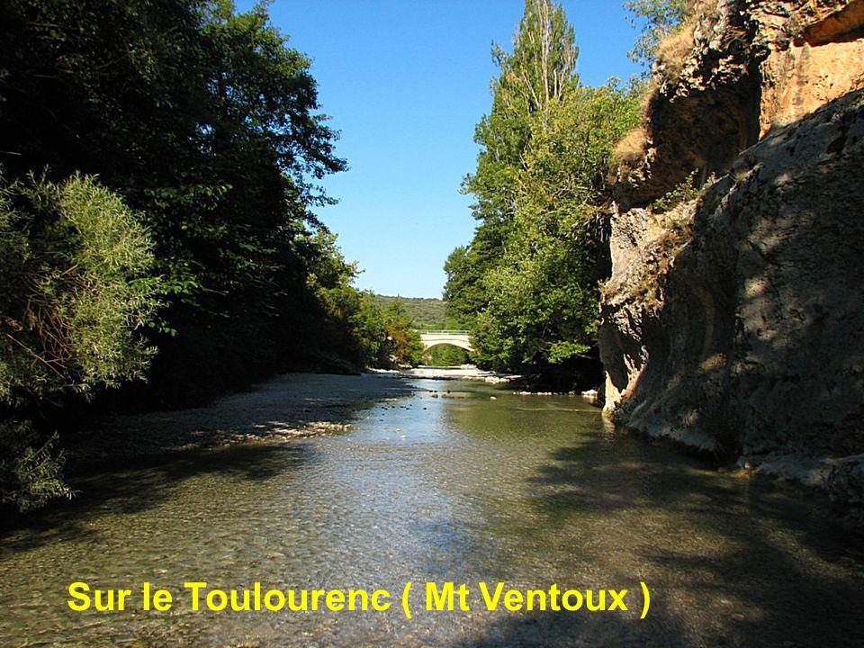 Sur le Toulourenc ( Mt Ventoux )