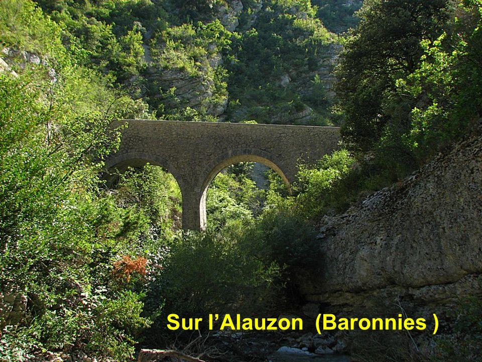 Sur l'Alauzon (Baronnies )