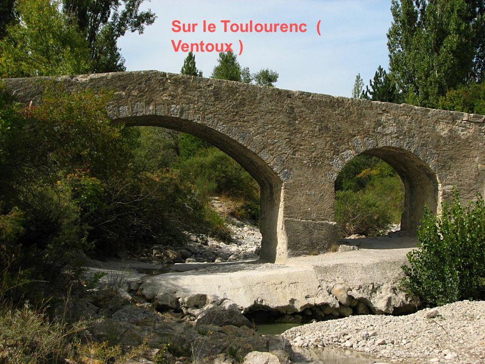 Sur le Toulourenc ( Ventoux )