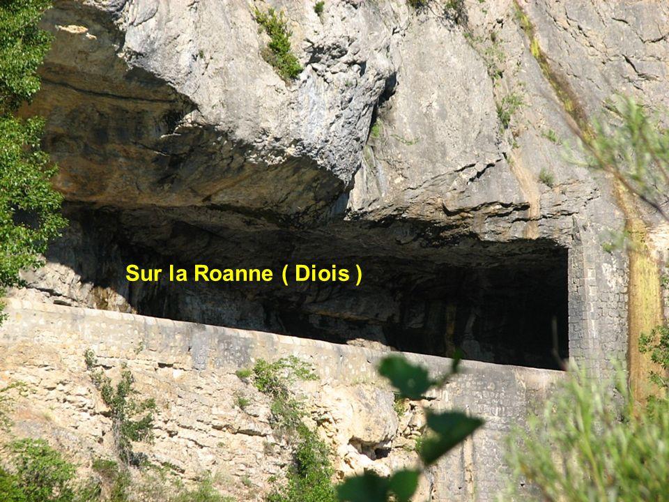 Sur la Roanne ( Diois )