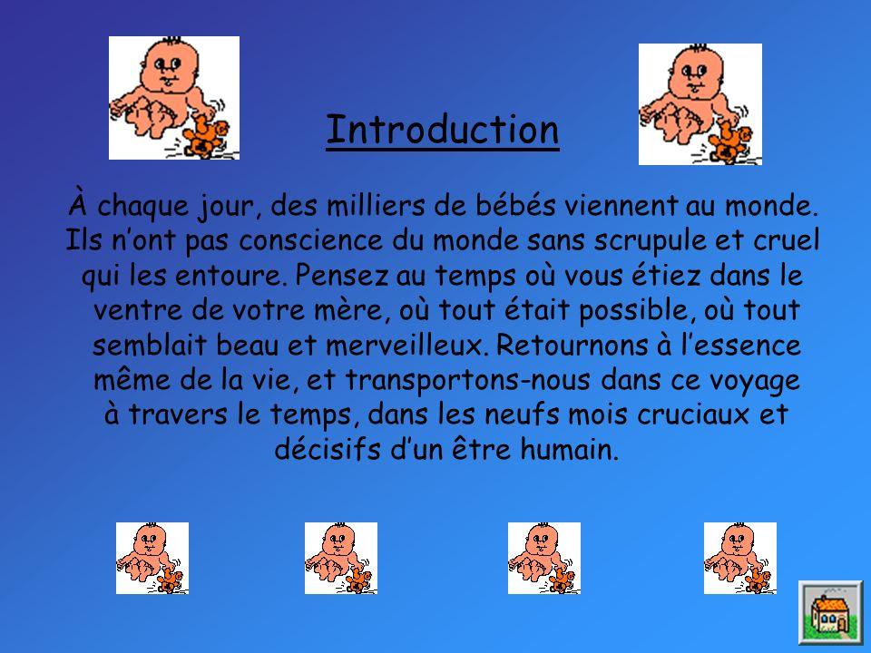 Introduction À chaque jour, des milliers de bébés viennent au monde.