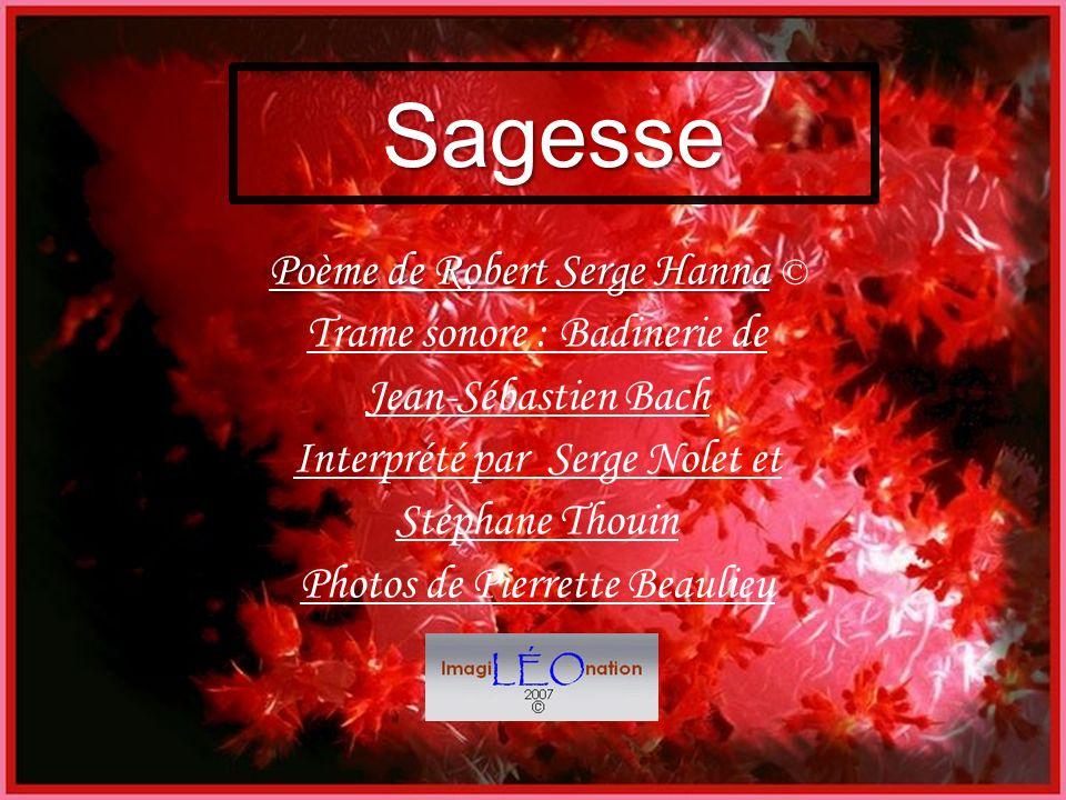 Sagesse Poème de Robert Serge Hanna © Trame sonore : Badinerie de