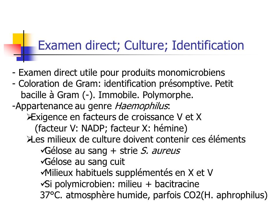 Examen direct; Culture; Identification