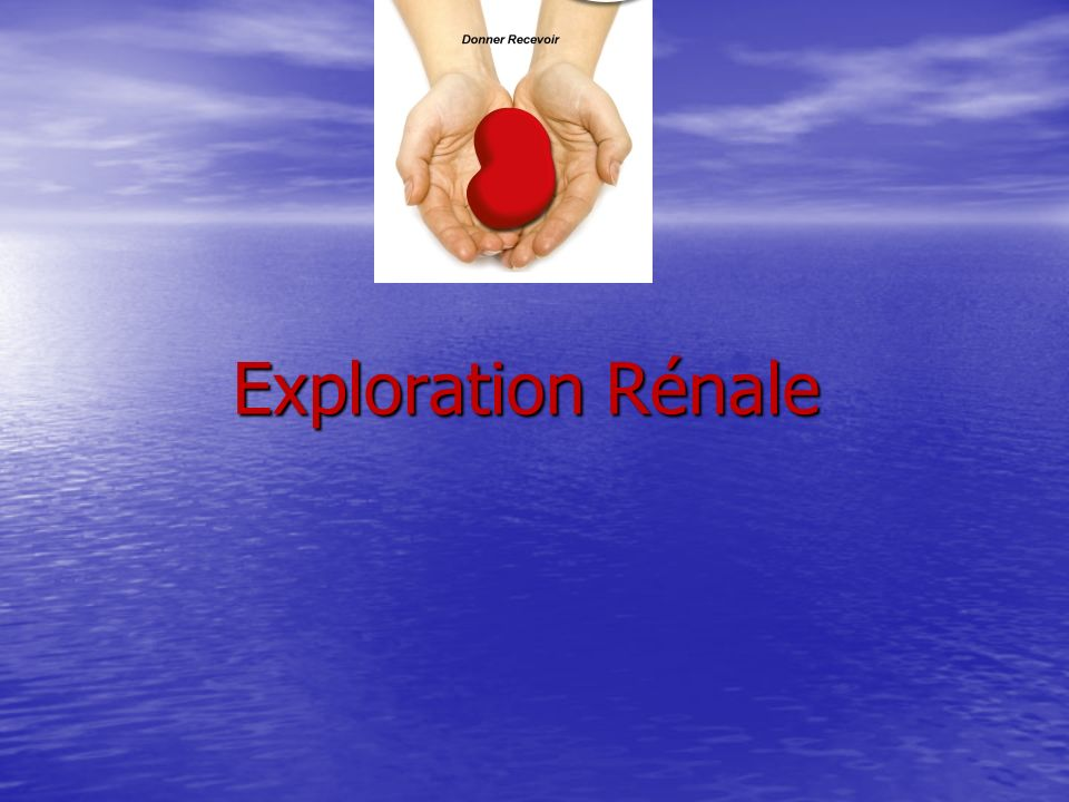 Exploration Rénale