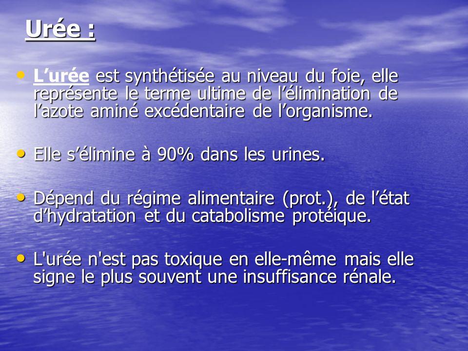 Urée : L'urée est synthétisée au niveau du foie, elle représente le terme ultime de l'élimination de l'azote aminé excédentaire de l'organisme.
