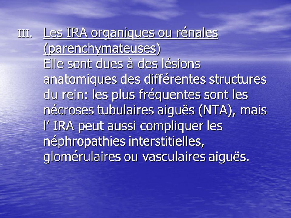 Les IRA organiques ou rénales (parenchymateuses) Elle sont dues à des lésions anatomiques des différentes structures du rein: les plus fréquentes sont les nécroses tubulaires aiguës (NTA), mais l' IRA peut aussi compliquer les néphropathies interstitielles, glomérulaires ou vasculaires aiguës.