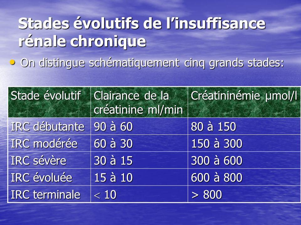 Stades évolutifs de l'insuffisance rénale chronique