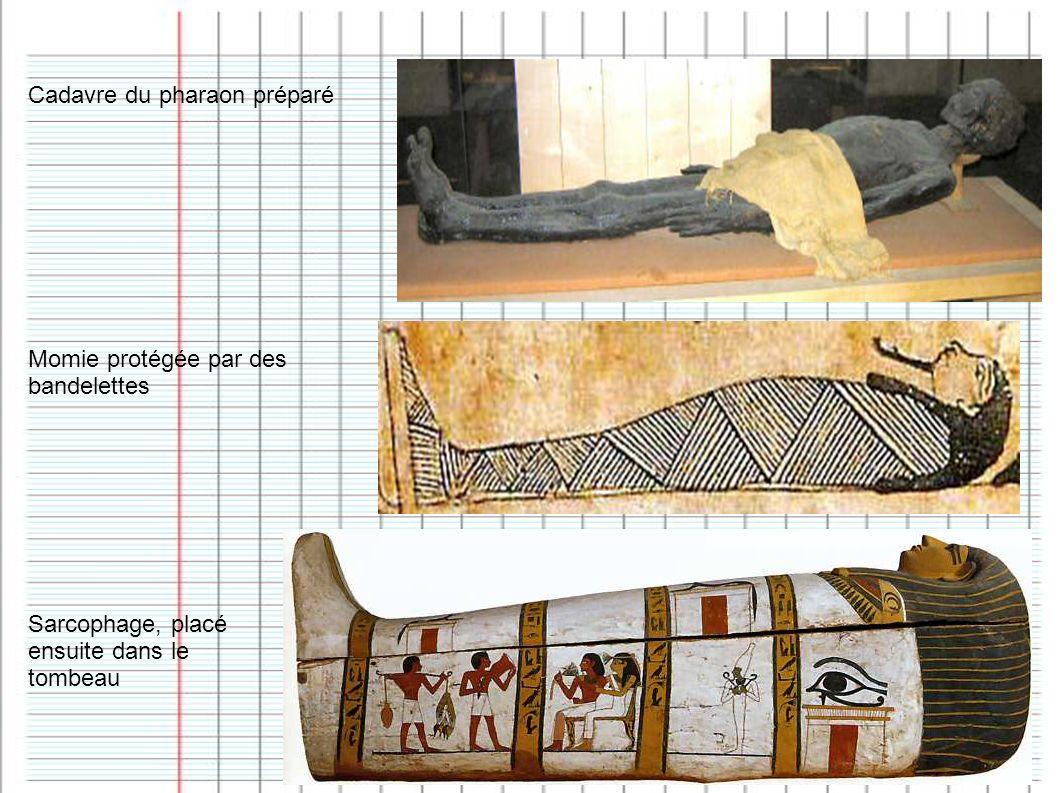 Cadavre du pharaon préparé