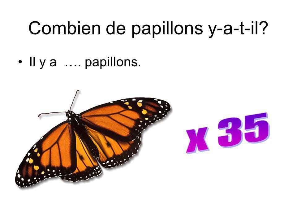 Combien de papillons y-a-t-il