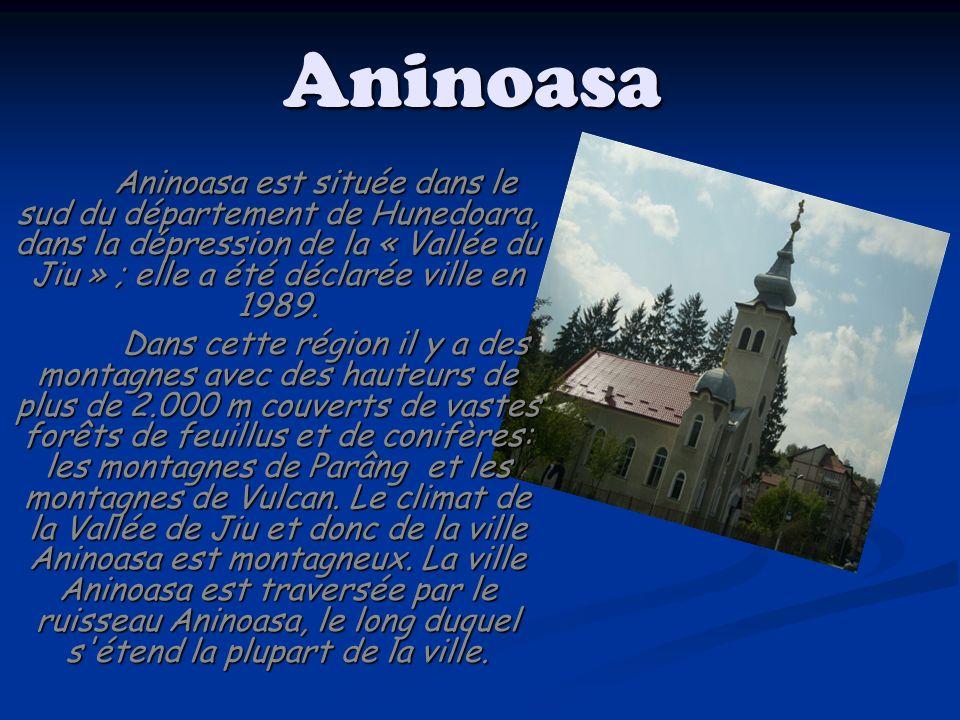 Aninoasa Aninoasa est située dans le sud du département de Hunedoara, dans la dépression de la « Vallée du Jiu » ; elle a été déclarée ville en 1989.