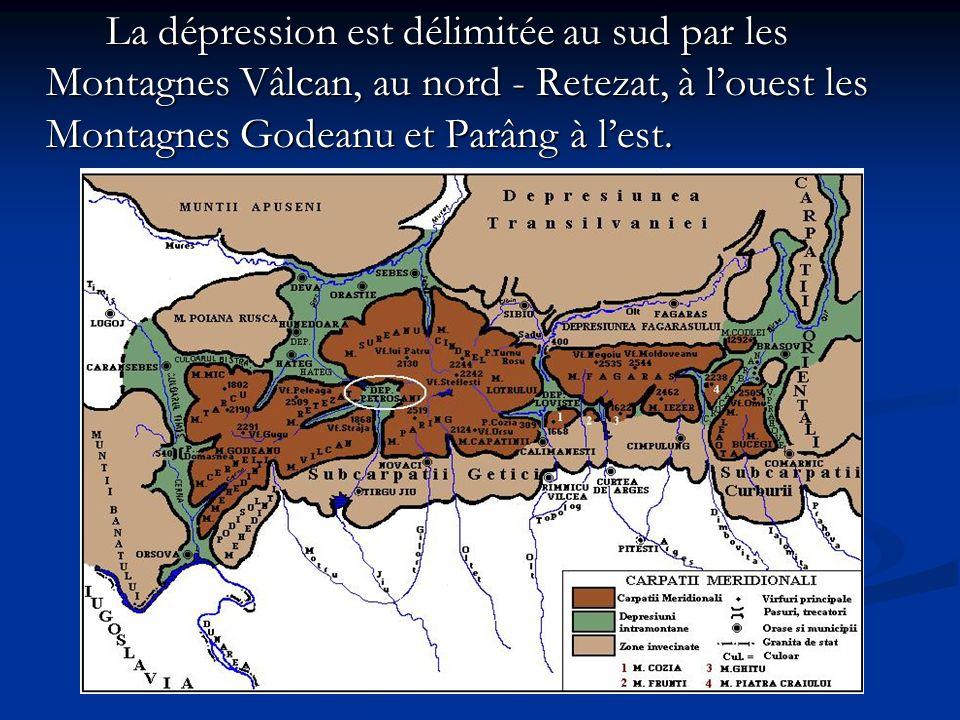 La dépression est délimitée au sud par les Montagnes Vâlcan, au nord - Retezat, à l'ouest les Montagnes Godeanu et Parâng à l'est.