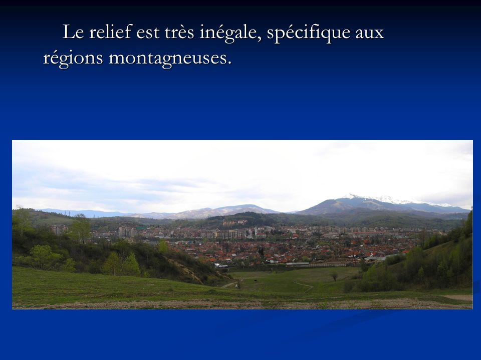 Le relief est très inégale, spécifique aux régions montagneuses.