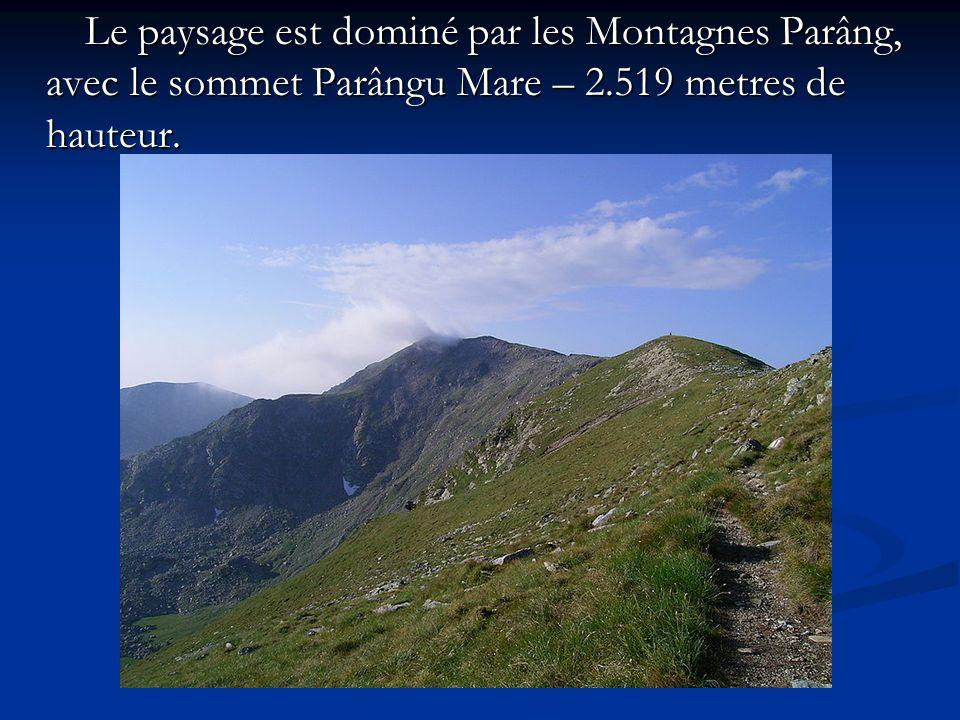Le paysage est dominé par les Montagnes Parâng, avec le sommet Parângu Mare – 2.519 metres de hauteur.