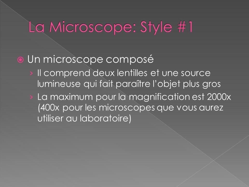 La Microscope: Style #1 Un microscope composé