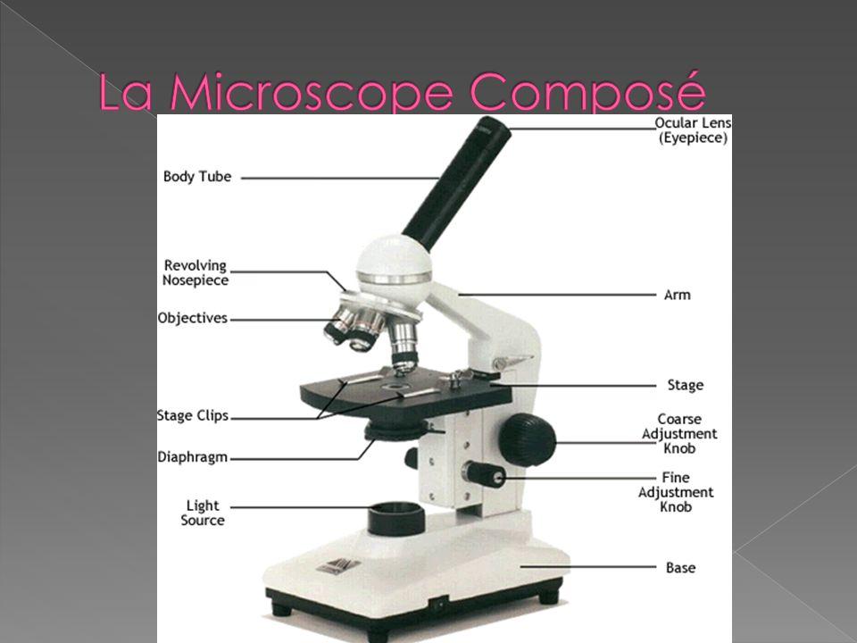 La Microscope Composé