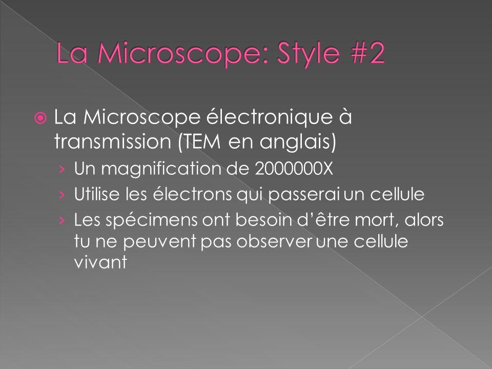 La Microscope: Style #2 La Microscope électronique à transmission (TEM en anglais) Un magnification de 2000000X.