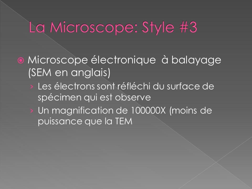 La Microscope: Style #3 Microscope électronique à balayage (SEM en anglais) Les électrons sont réfléchi du surface de spécimen qui est observe.