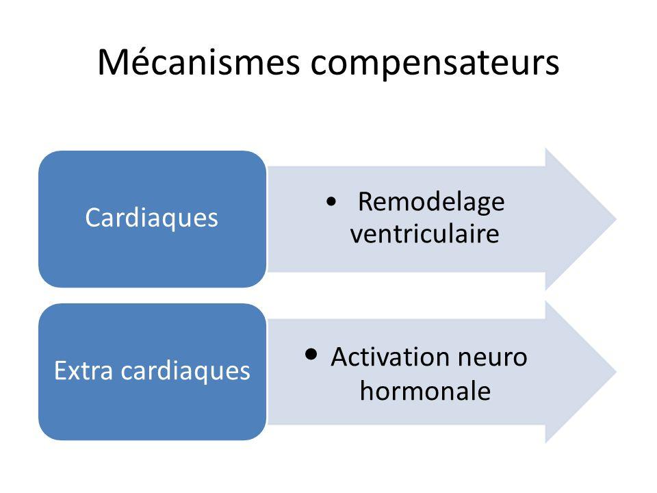 Mécanismes compensateurs