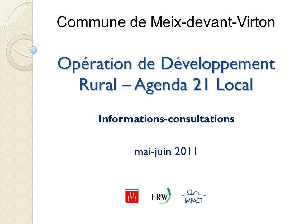 Informations-consultations mai-juin 2011
