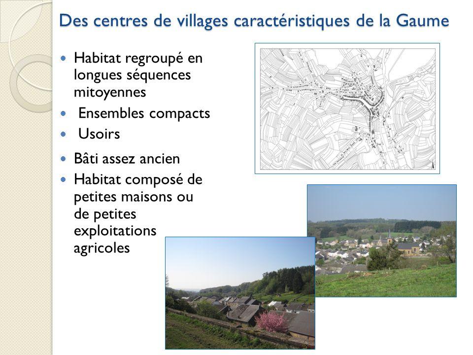 Des centres de villages caractéristiques de la Gaume