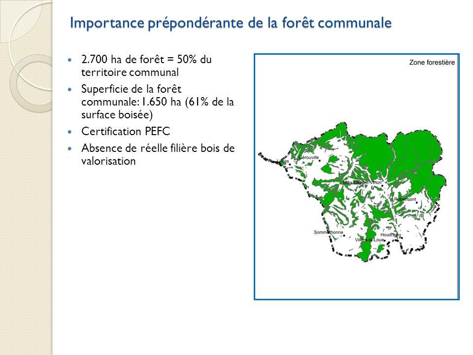 Importance prépondérante de la forêt communale