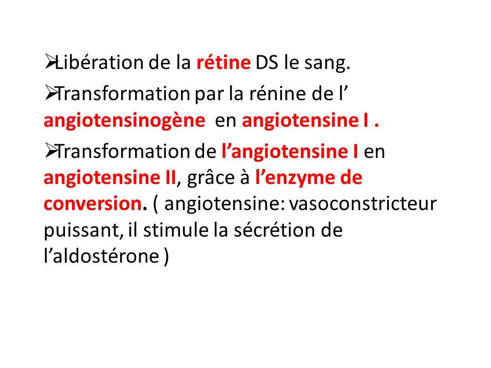 Libération de la rétine DS le sang.